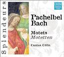 DHM Splendeurs: Pachelbel/Bach: Motets/Cantus Cölln