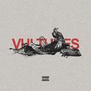 Vultures feat.Ricky Remedy,DeBroka/HXV