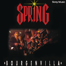 Bourgenvilla/Spring