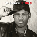 The Essential Steady B/Steady B