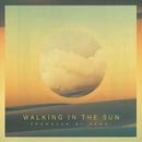 Walking in the Sun/PANG!