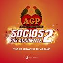 """No Es Grave Si Te Va Mal (Tema de la Película """"Socios por Accidente 2"""")/Agapornis"""