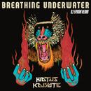 Breathing Underwater (DJ Spinna Galactic Soul Remix)/Hiatus Kaiyote