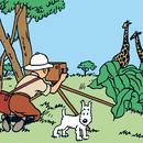 Tintin i Kongo/Tintin