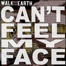 Can't Feel My Face/Walk Off The Earth
