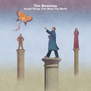 Stupid Things That Mean the World/Tim Bowness
