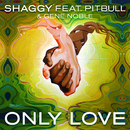 Only Love feat.Pitbull,Gene Noble/Shaggy