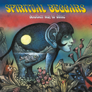 Another Way To Shine/SPIRITUAL BEGGARS