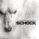 Schock/Eisbrecher