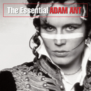 The Essential Adam Ant/Adam Ant