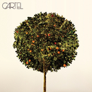 Cartel/Cartel
