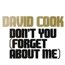 Don't You (Forget About Me)/David Cook