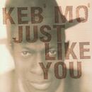 JUST LIKE YOU/Keb' Mo'