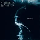 Whaler/Sophie B. Hawkins