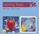 Jollification / Dizzy Heights/Lightning Seeds