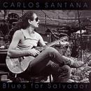 Blues For Salvador/Carlos Santana