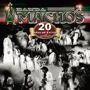 20 Años De Exitos En Vivo/Banda Machos