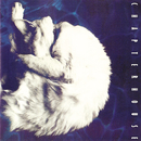 Whirlpool (Expanded Edition)/Chapterhouse