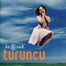 Turuncu/Sertab Erener