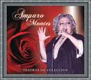 Tesoros de Coleccion - Amparo Montes/Amparo Montes
