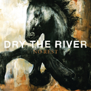 No Rest/Dry the River