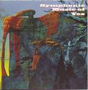 Symphonic Music Of Yes/David Palmer