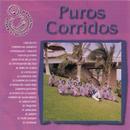 Puros Corridos/Banda Sinaloense el Recodo de Cruz Lizárraga