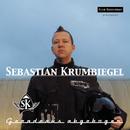 Geradeaus abgebogen/Sebastian Krumbiegel