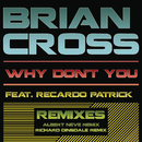 Why Don't You (Remixes)/Brian Cross