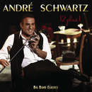 12 plus One/Andre Schwartz