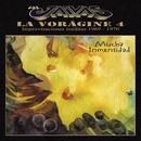 La Voragine 4 - Mucha Inmensidad/Los Jaivas