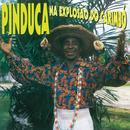 Na Explosão do Carimbó/Pinduca