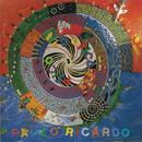 Psico Trópico/Paulo Ricardo