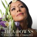 Palomo Del Comalito/Lila Downs