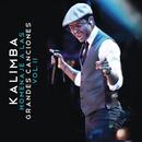 Homenaje A Las Grandes Canciones, Vol. II/Kalimba