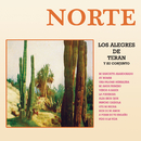 Norte/Los Alegres de Terán