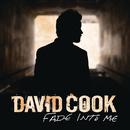 Fade Into Me (Radio Edit)/David Cook
