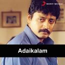 Adaikalam (Original Motion Picture Soundtrack)/Sabesh-Murali