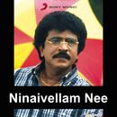 Ninaivellam Nee (Original Motion Picture Soundtrack)/M.S. Viswanathan