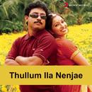 Thullum Ila Nenjae (Original Motion Picture Soundtrack)/Sangeetha Priya