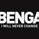 I Will Never Change (2012)/Benga