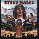 Schemer-Dreamer/Steve Walsh