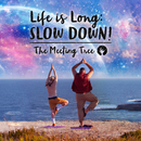 Life is Long: Slow Down!/The Meeting Tree