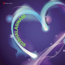 Subhalagnam (Original Motion Picture Soundtrack)/S.V. Krishna Reddy