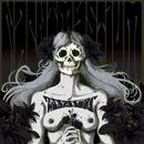 Assassins: Black Meddle, Pt. I/Nachtmystium