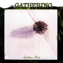 Nighttime Birds/The Gathering