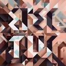 Erectus/Ruger Hauer