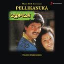 Pellikanuka (Original Motion Picture Soundtrack)/M.M. Keeravani