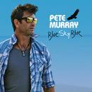 Blue Sky Blue feat.Fantine/Pete Murray