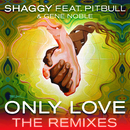 Only Love (The Remixes) feat.Pitbull,Gene Noble/Shaggy